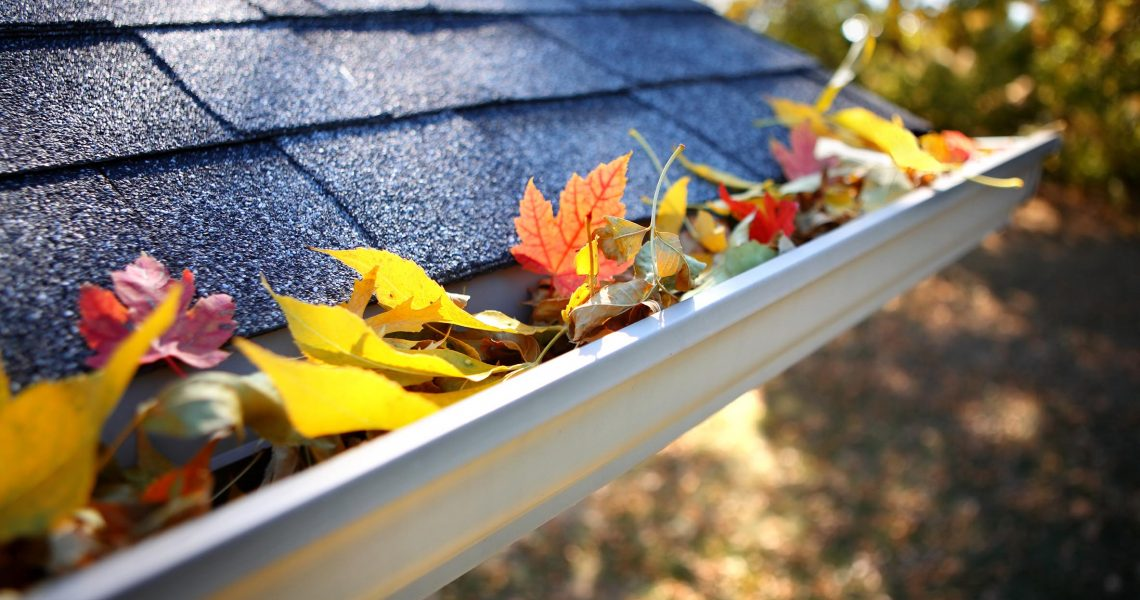 Emergency Plumbing Tips for the Fall Season