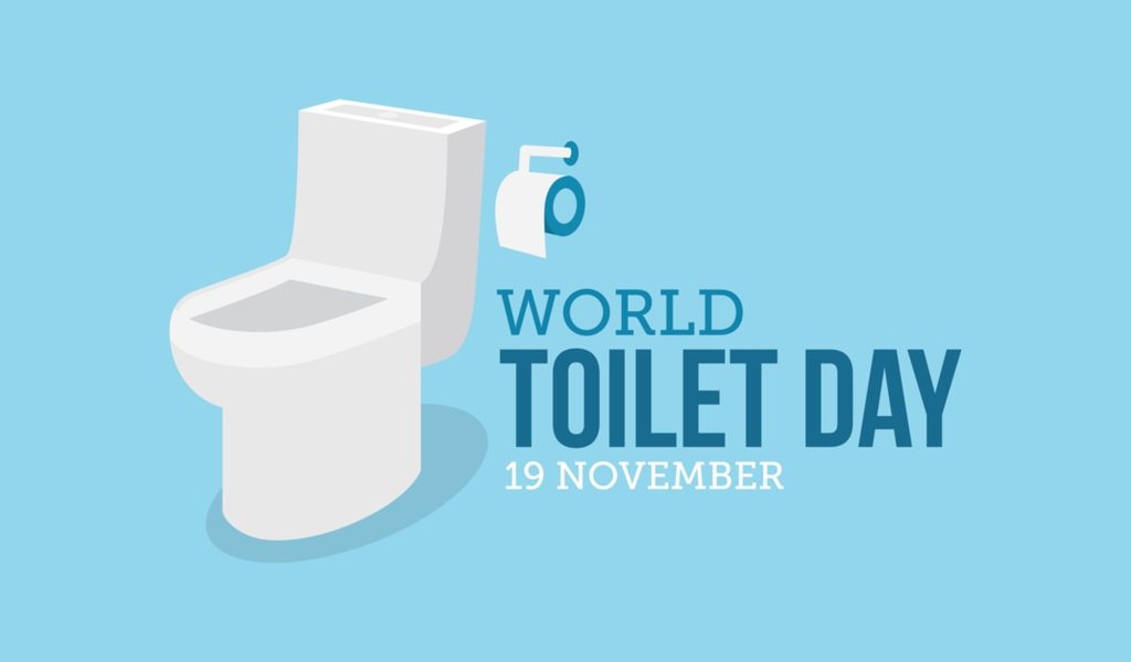 Did You Know Toilets Have Their Own Holiday?