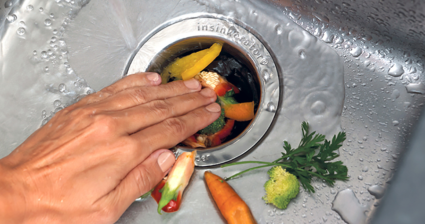 A Cautionary Tale For Your Garbage Disposal