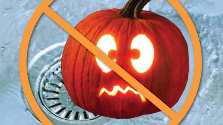 1.  Pumpkin Carving Can Be A Terror On Your Garbage disposal Pumpkin pulp and seeds are not meant for your sink or toilet. If pumpkin carving is part of your Halloween plans then it is important to stay mindful of where you choose to dispose of your goo and seeds. As you remove the insides from your […]